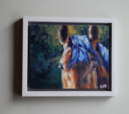 Eye Study II, float framed in white pine