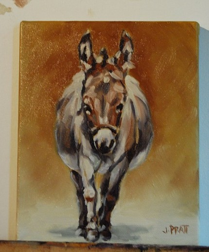 Donkey Study, 8x10 Oil on Canvas