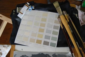 colour range for Beau painting from Farrow and Ball paint deck